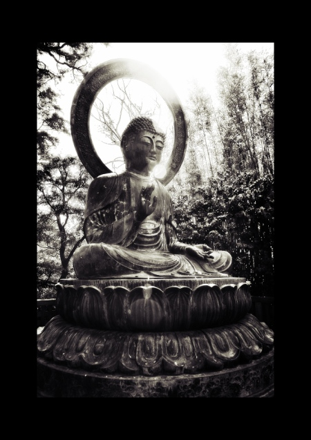 The Importance of Being Buddha