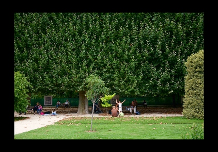 The Garden ofPlants
